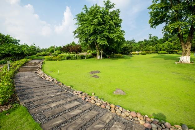 grassland-landscape-greening-environment-park-background_1112-1177